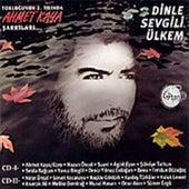 Dinle Sevgili Ülkem by Various Artists