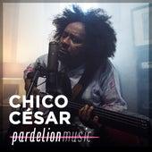 Chico César Live On Pardelion Music by Chico Cesar