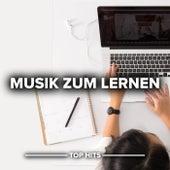 Musik zum Lernen von Various Artists