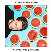 Without You (Remixes) von Steve Void