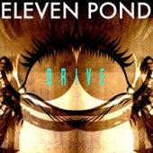 Drive de Eleven Pond
