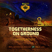 UniRidd Project: Togetherness On Ground de Various Artists