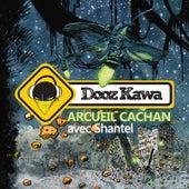 Arcueil Cachan (avec Shantel) de Dooz Kawa
