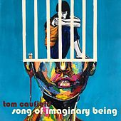 Song of Imaginary Being by Tom Caufield