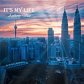 It's My Life by Anthony Vize