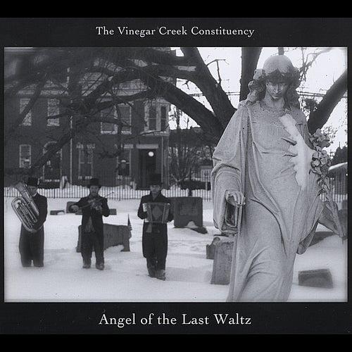Angel of the Last Waltz by The Vinegar Creek Constituency