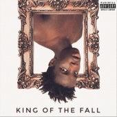 King Of The Fall de Jerome