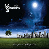 Stories from the Middle of Nowhere von Big Something