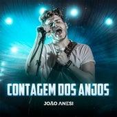Contagem dos Anjos (Ao Vivo) di João Anesi