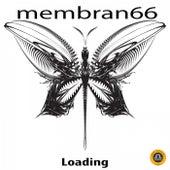 Loading von Membran 66