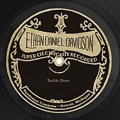Turkle Dove de Ethan Daniel Davidson