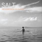 The Loneliness of Clouds de Salt