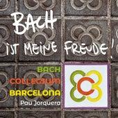 Bach ist meine freude von Pau Jorquera