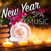 New Year Spa Music de Various Artists