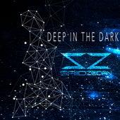 Deep in the Dark by Saiid Zeidan