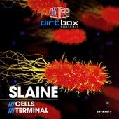 Cells / Terminal de Slaine