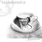 Cianuro de Salamandra