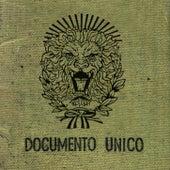 Documento Único de La Renga