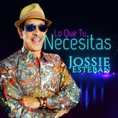 Lo Que Tu Necesitas de Jossie Esteban