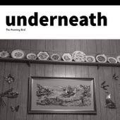 Underneath by Morningbird