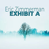 Exhibit A de Eric Zimmerman