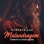 Malandragem (Tributo a Cássia Eller) de Cynthia Luz