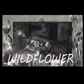 Wildflower Ducorre de DuCorre Produções