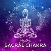 Today Only Sacral Chakra de Chakra's Dream, Buddha Lounge, Yoga Music
