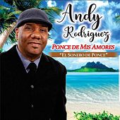 Ponce de Mis Amores by Andy Rodriguez