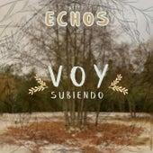Voy Subiendo by Grupo Echos