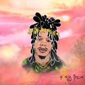 Many Moods of Izem by Kxng Izem