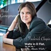 Waltzes, Op. 64: No. 1 in D-Flat Major, Molto vivace