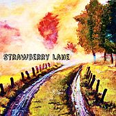 Strawberry Lane by Danny Mitchell