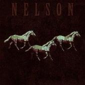 600 Pferde di Nelson