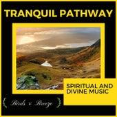 Tranquil Pathway - Spiritual And Divine Music di Liquid Ambiance