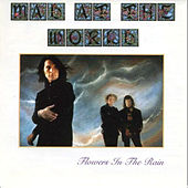 Flowers In The Rain by Mad at the World