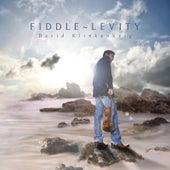 Fiddle Levity by David Klinkenberg