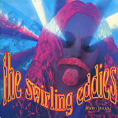 Zoon Daddy by The Swirling Eddies