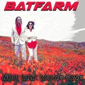 Now That You're Gone by Batfarm