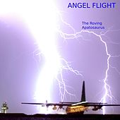 Angel Flight by The Roving Apatosaurus