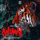 Animal de Lisa M