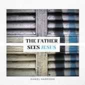 The Father Sees Jesus di Daniel Harrison