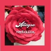 Bandolera by Allegra