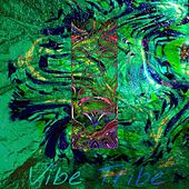 Dreaming de The Vibe Tribe