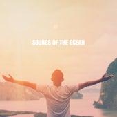 Sounds of the Ocean de Ocean Waves For Sleep (1)