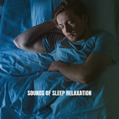 Sounds of Sleep: Relaxation de Rain Sounds and White Noise