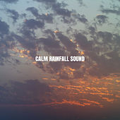 Calm Rainfall Sound by White Noise Research (1)