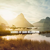 Sounds of Rain Relaxation de Relaxing Rain Sounds