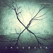 Incubate by Brand X Music