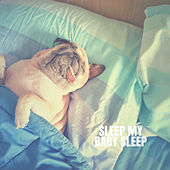 Sleep My Baby Sleep de Lullaby Babies